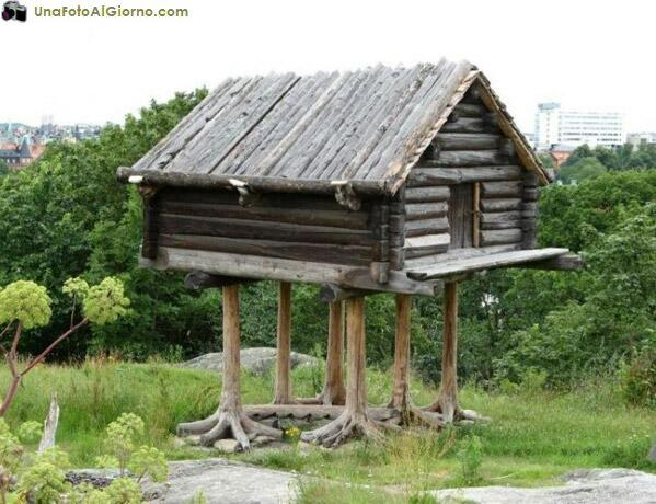 Fondamenta radicate la nostra casa ha messo radici foto - Fondamenta casa ...